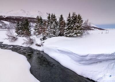 Árbugsá in Fnjóskárdalur - North │ Iceland Landscape Phot
