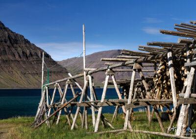 Flateyri village in Önundarfjörður - Westfjords │ Iceland C