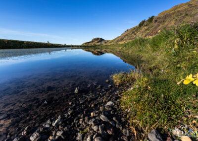 Gaukshöfði - South │ Iceland Landscape Photography