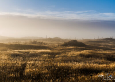 Meadow in the fog - South West │ Iceland Landscape Photography