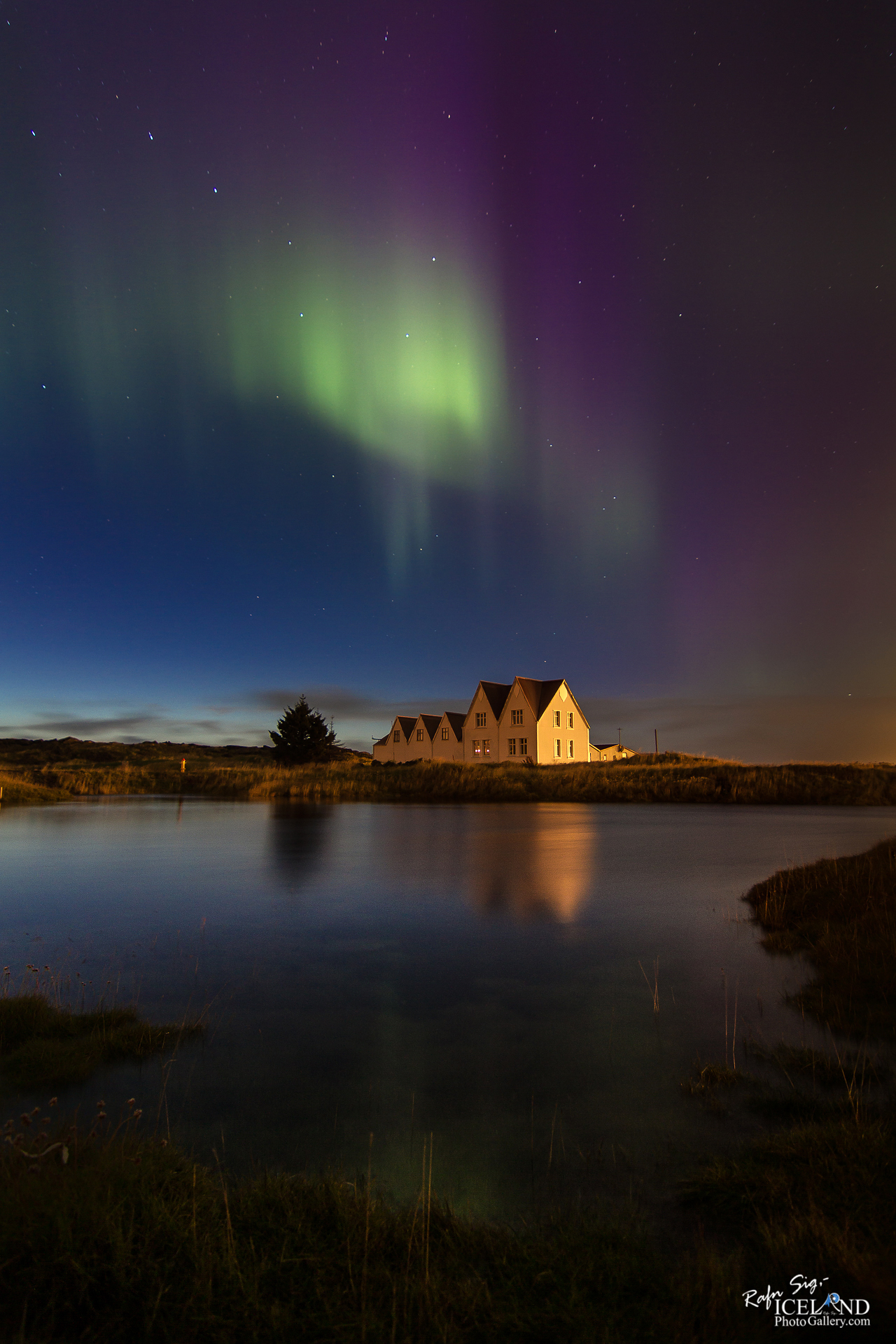 Northern lights at Straumur Farm │ Iceland