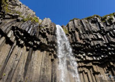Svartifoss waterfall - South │ Iceland Landscape Photography