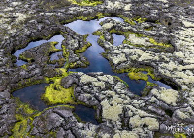 Tjarnarhraun Lava and water Patterns │ Iceland Landscape from