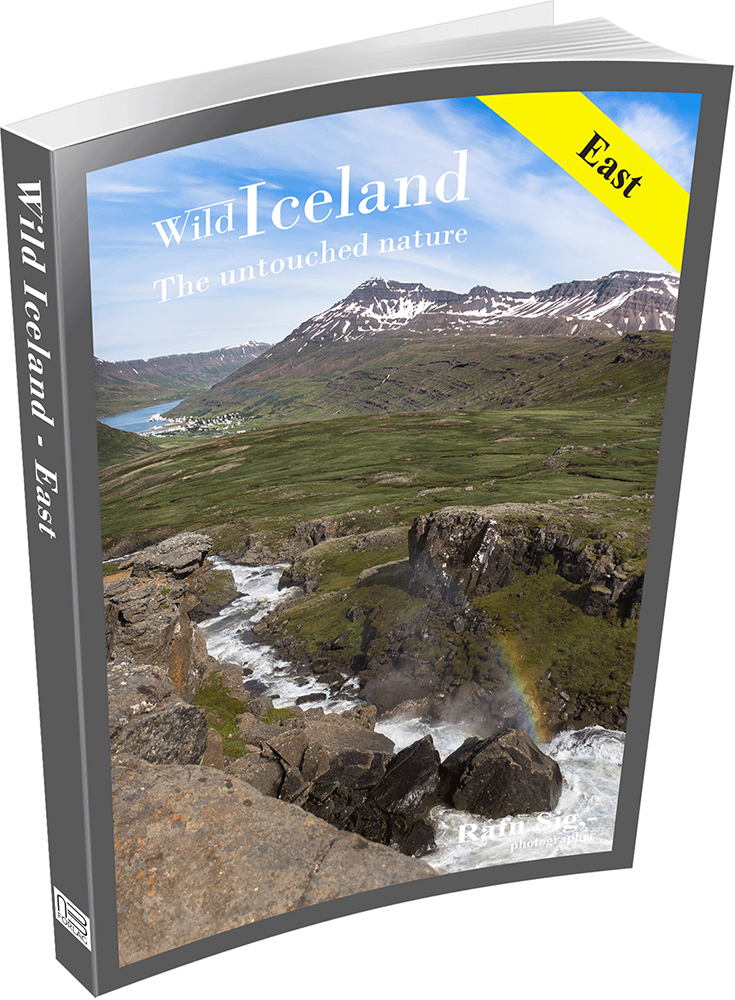 Look inside East -Wild Iceland