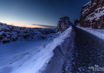 Almannagjá rift at Þingvellir National Park - South │ Icelan