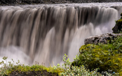 Dettifoss waterfall │ Iceland Landscape Photography