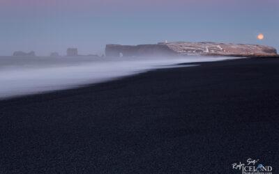 Dyrhólaey - South │ Iceland Landscape Photography