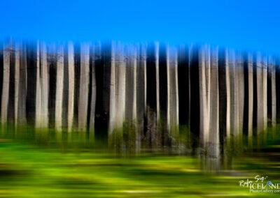 Gerduberg Columnar basalt - West │ Iceland Landscape Photograp