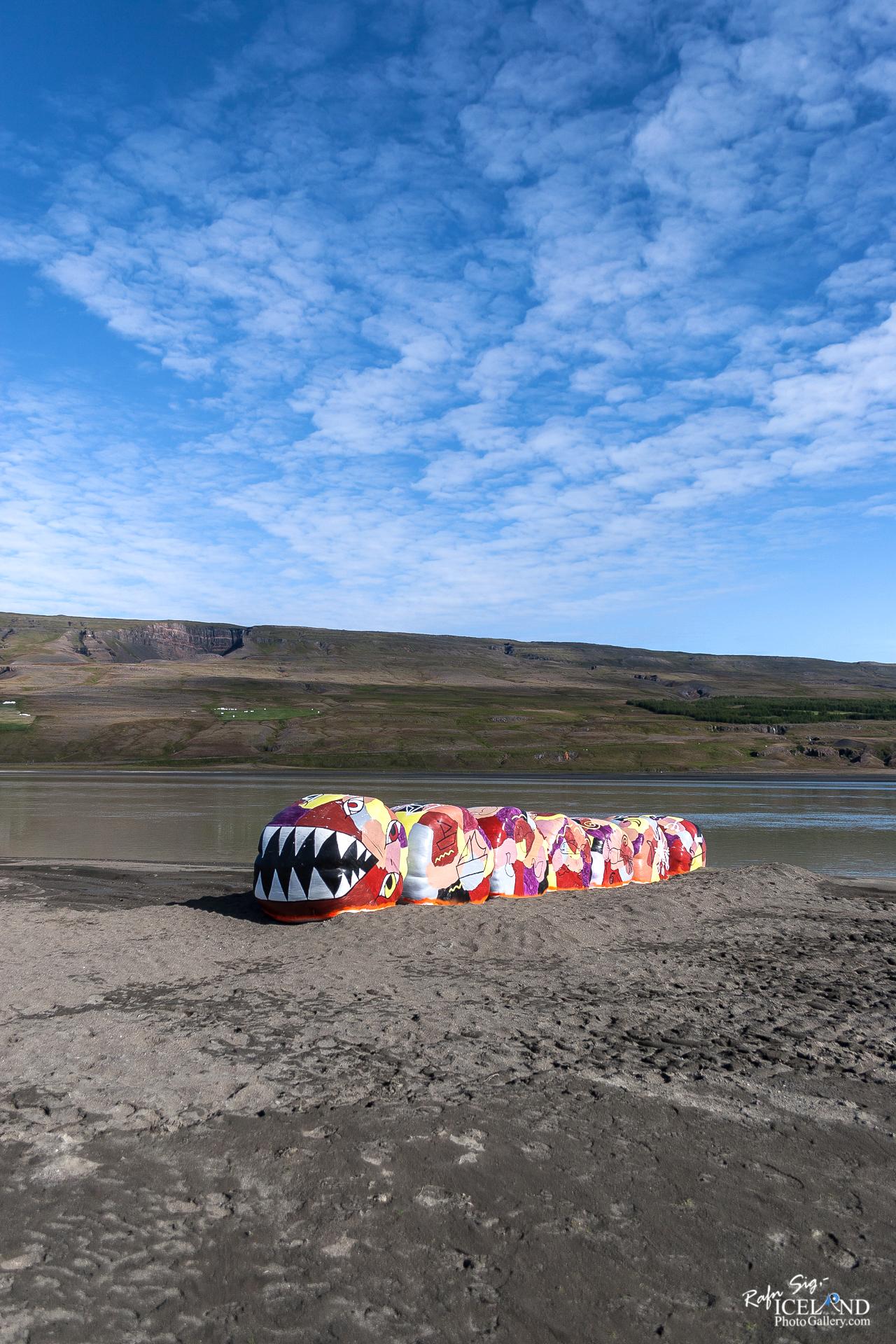 Lagarfljótsormurinn in Lagarfljót – Eastfjords │ Iceland