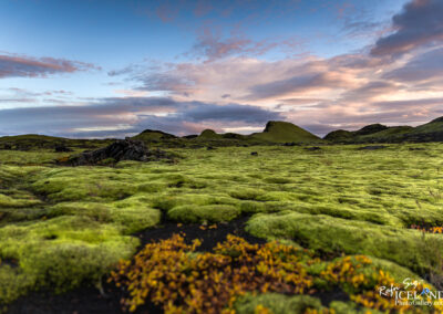 Lakagígar craters and Surroundings │ Iceland Photo Gallery