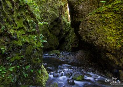 Nauthúsagil canyon - South │ Iceland Landscape Photography