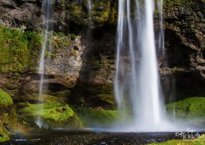 Seljalandsfoss - South │ Iceland Landscape Photography