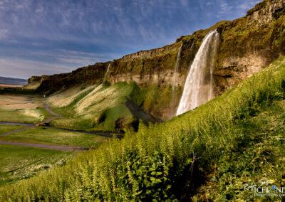Seljalandsfoss waterfall - South │ Iceland Landscape Photograp