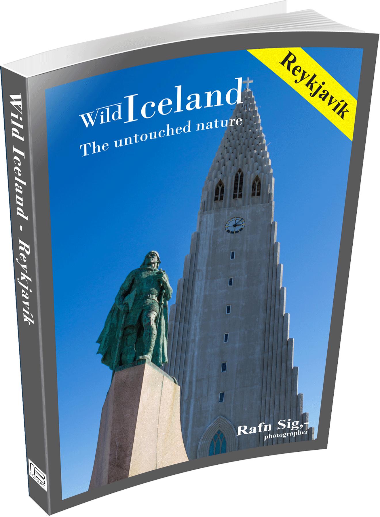 Reykjavík Capital