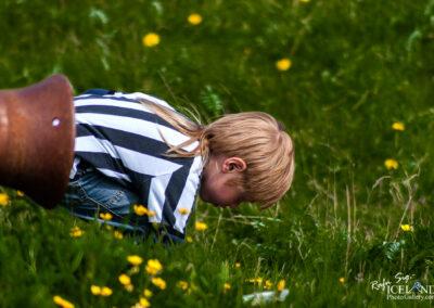 Boy playin in the grass at Arnarstapi - Snæfellsnes