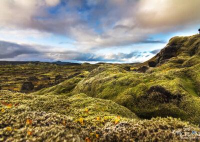 Lakagígar (Craters of Laki) │ Iceland Landscape Photography