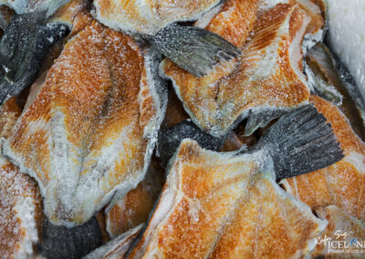 Salted cod fish │ Iceland City Photography