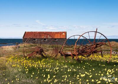 Vatnsleysuströnd – Old Plow │ Iceland Photo Gallery
