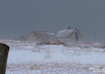 Ásláksstaðir abandoned farm │ Iceland Photo Gallery