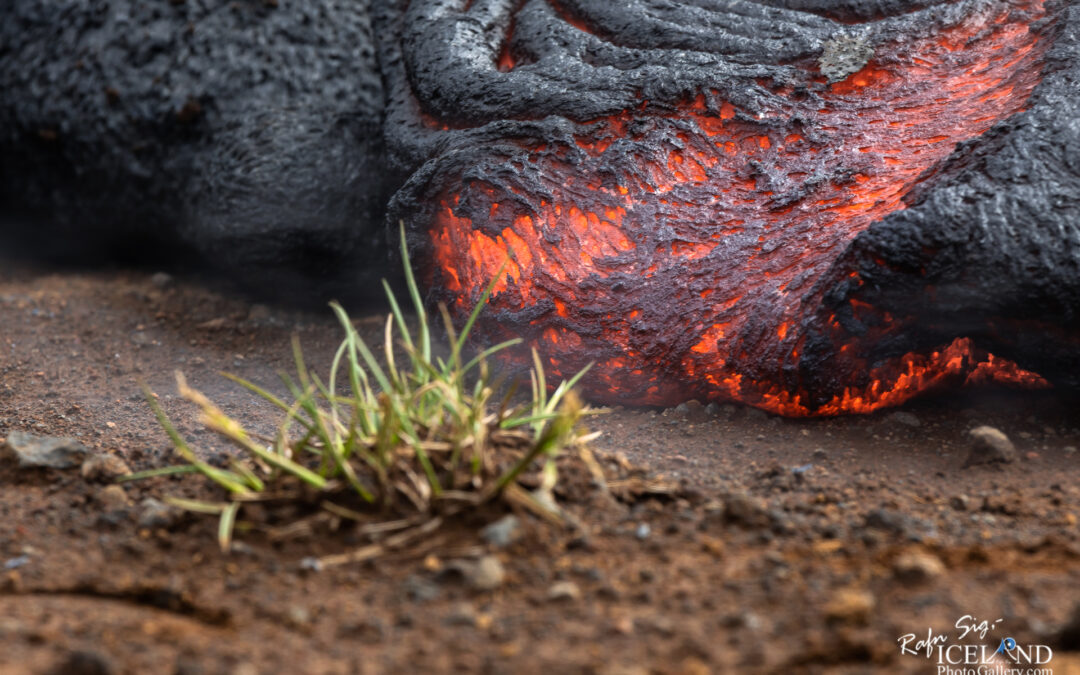 Nátthagi Lava flow 08-06-2021 – Iceland Photo Gallery