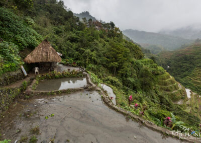 Aguian Banaue Rice Terrases - Philippine