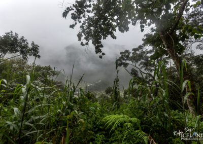 Batad Trail - #Philippines