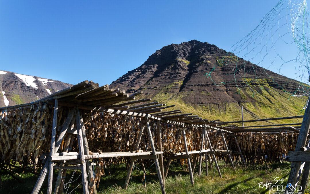 Flateyri – Iceland Photo Gallery