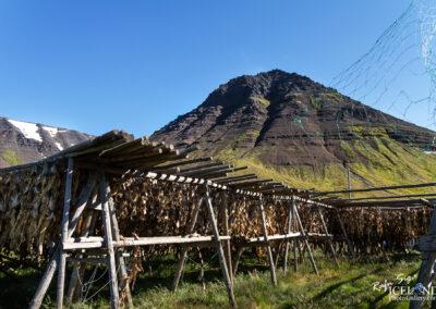 Flateyri │ Iceland Photo Gallery
