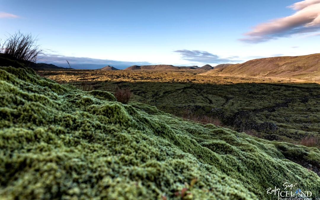 Driffellshraun Lava – Iceland Photo Gallery