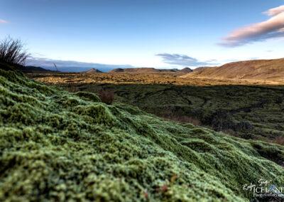 Driffellshraun Lava │ Iceland Photo Gallery